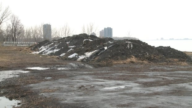 It will cost the borough of Verdun about $1M to clean up the contaminated soil from the site by the St. Lawrence River.