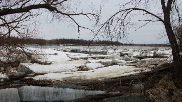 John Anderson took this photograph of enormous chunks of ice littering his property, where trees used to stand.