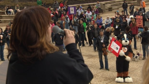 Hundreds gathered outside of the Alberta legislature building Sunday to support proposed changes to the Criminal Code of Canada. If accepted, the amendment would allow for harsher punishment of people found guilty of animal abuse.