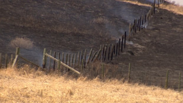 Two men have been charged with arson in connection to grass fires south of Longview on Thursday.