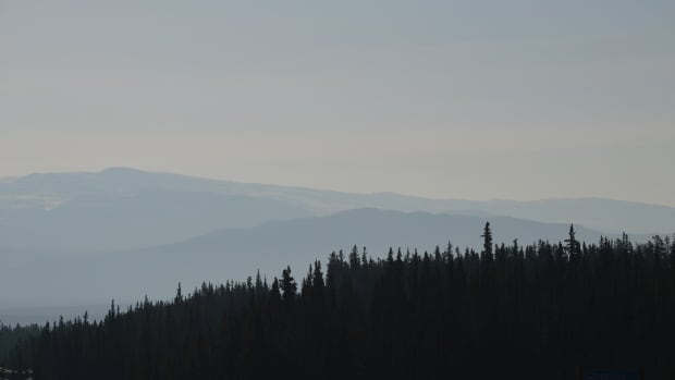Residents of Whitehorse woke this morning to a skyline filled with haze, due to forest fires in Alaska.