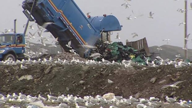 Contractors in Happy Valley-Goose Bay say increased cost to get rid of trash at the dump will have a negative impact on people, not businesses.