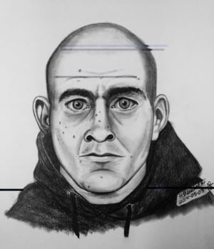 Attempted abduction composite sketch skpic