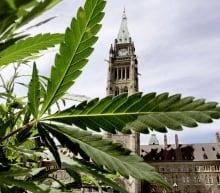 marijuana pot parliament decriminalization
