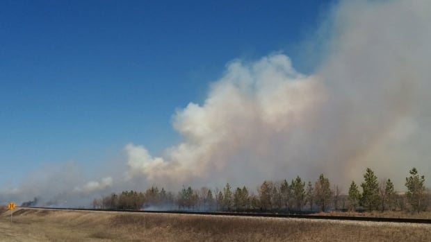 Several local fire departments have been dispatched to fight a grass fire near Kronau.