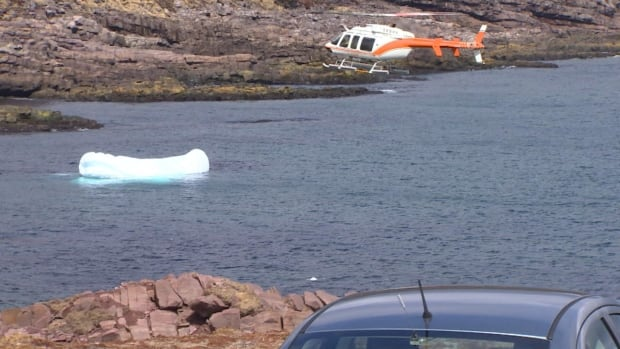 A helicopter scours the coastline around Cape Spear in the search for 50-year-old  Judith Skanes.