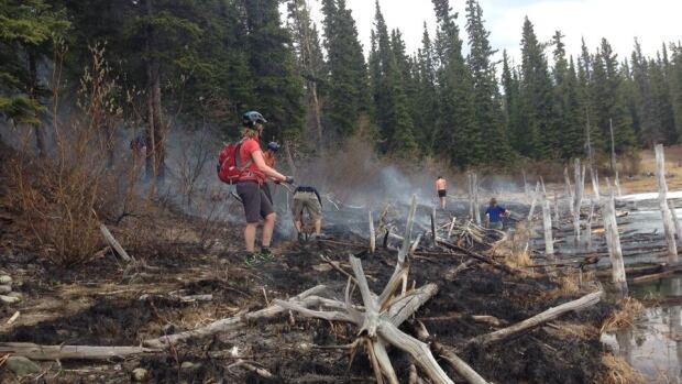 Hikers and bikers helped to put out a bush fire at Hidden Lakes on Sunday before the fire crew arrived.