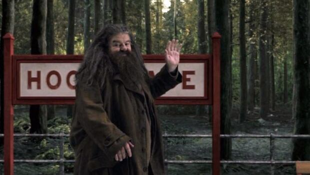 The character Hagrid from the Harry Potter book and film series will be part of the Hogwarts Express attraction that will debut this summer at Universal Orlando. The attraction will allow fans to ride the Hogwarts Express train and experience the British countryside.