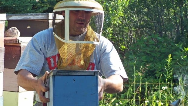 """Thunder Bay beekeeper Chris Carolan says about three-quarters of his 24 honeybee hives have been killed off, and other beekeepers in the region are facing big losses too.  """"Everbody's trying and trying and trying and there's so many forces that are killing our bees."""""""