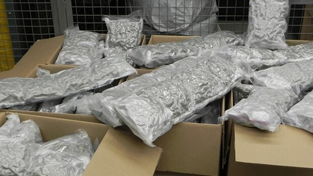 Manitoba RCMP pulled over a transport truck on Monday and say they found 62 kilograms of marijuana.