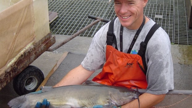 Tys Theysmeyer, seen in this 2007 photo with a channel catfish he caught from the Cootes Paradise Fishway, is the recipient of the Dr. Victor Cecilioni Award for the Environmentalist of the Year.