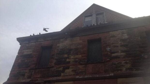 Pigeon problems? @GreySealHugger posted this photo of the building.