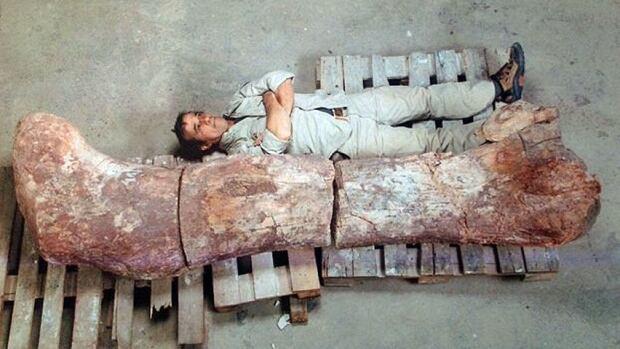 hi-titanosaur-852.jpg