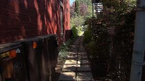 plateau-alley