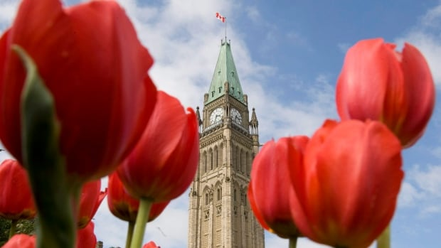 Will Canadians go to the polls before the tulips next bloom on Parliament Hill? Legislation has fixed an election date of Oct. 19, 2015, but the prime minister can decide to go to the polls before then.