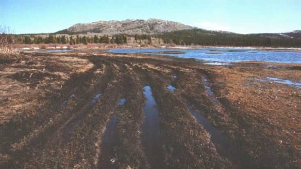 The Trails Only Yukon Association says the damage shown in this picture could be avoided if ATV use in the territory was regulated and fewer people came to Yukon to go off-roading.