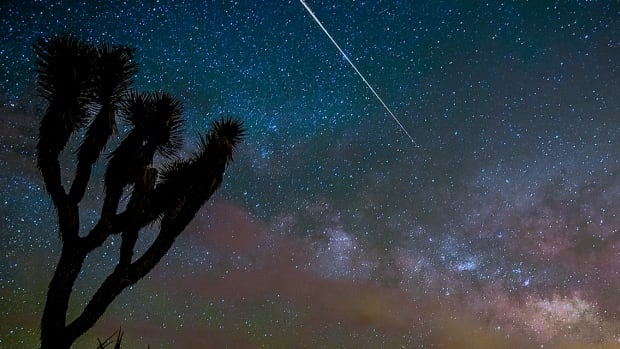 Canadian photographer Gavin Heffernan was in California's Joshua Tree National Park during the Camelopardalids meteor shower. 'Didn't see a million of them, but captured a few nice strikes with Milky Way in the background,' he told CBCNews.ca in an email.