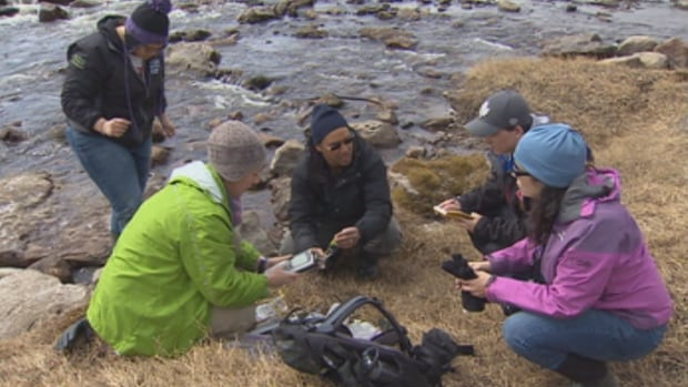 This group of researchers includes a student from Nunavut Arctic College and two graduate students from Southern Canada. They're checking pH levels, electrical conductivity and the temperature of the Apex River near Iqaluit to see if it could be used a water source for the city.