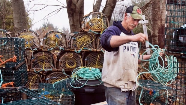 Canadian scientists are urging the federal government to sanction the small-scale fisheries document from a committee with the United Nation's Food and Agriculture Organization.
