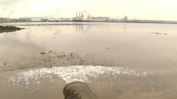 Twenty years ago, well over half of the city's sewage went straight into the city's harbour without being treated.
