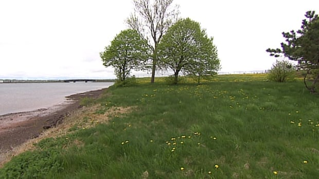 The Stratford waterfront is largely undeveloped, but work will begin on a new park there this summer.