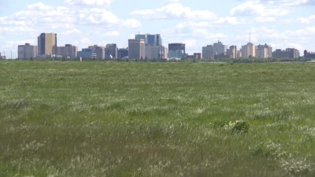 Regina City Council is increasing development fees and phasing in the number of new neighbourhoods to be built.