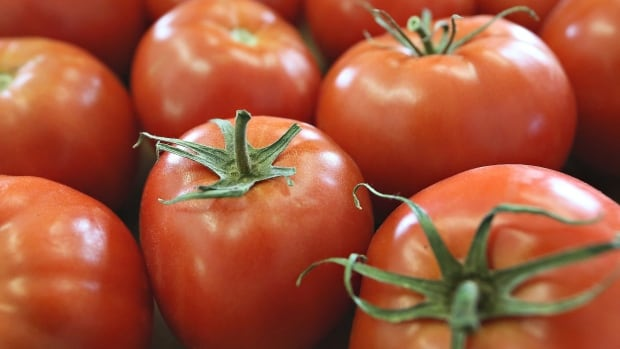Heinz was looking to recycle the leftover parts of the nearly two million tonnes of tomatoes it uses to make ketchup each year.