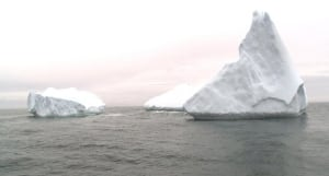 icebergs St. Anthony