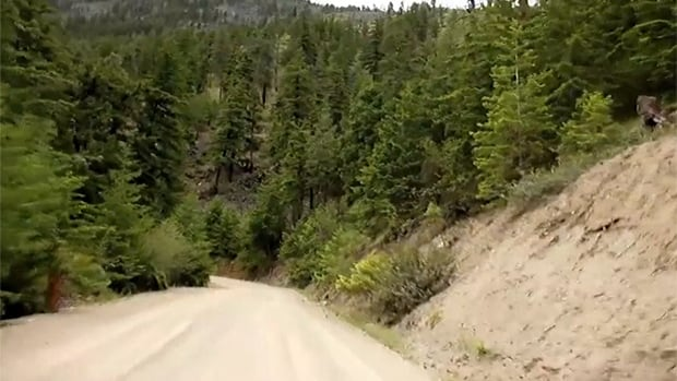 One of the many back country roads near Pasulko Lake, north of Lytton, B.C.