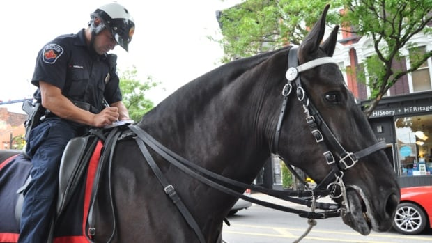 Private Const. Preston Gabriele and Lincoln, an eight-year-old Percheron, patrol downtown Hamilton. City hall just voted to slap a $250 fine on anyone who touches, harasses, taunts or otherwise interferes with a police horse or dog.
