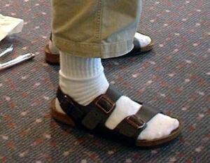 bc-140614-birkenstock-socks