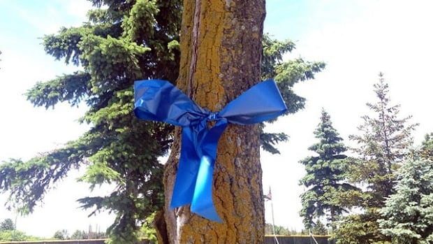 Blue ribbons mark path to Hampstead, Montreal West and Côte St-Luc's demerger 10th anniversary party. The ribbons are a throwback to the demerger campaign of 2004.