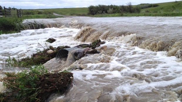 Four rivers flooded last week on the Kainai Nation, washing out several roads and forcing residents from their homes.