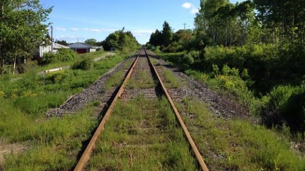 A working group is trying to save the rail line between Port Hawkesbury and Sydney.