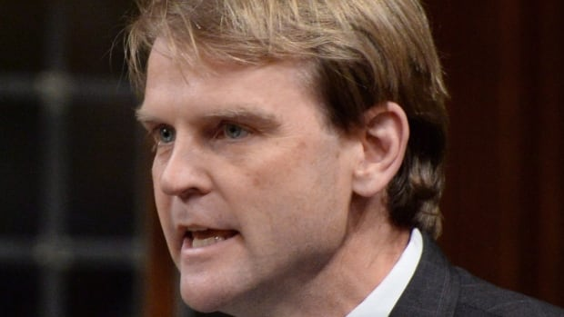 Immigration Minister Chris Alexander is under pressure to bring more Syrian refugees to Canada.