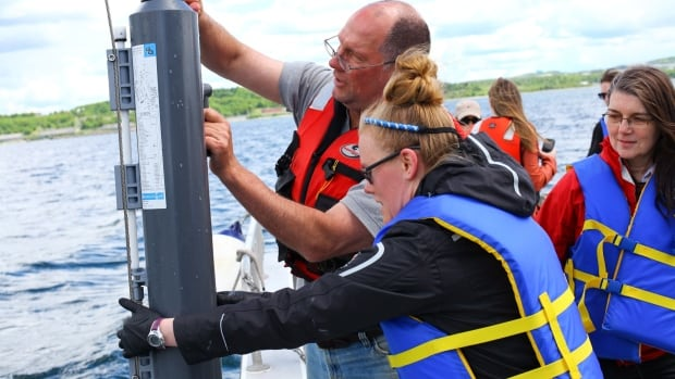 Richard Davis, Dr. Jennifer Tolman and Dr. Julie LaRoche take part in World Ocean Sampling Day, a global effort to learn more about the ocean's microbes. Canadian researchers also planned to take samples near Cambridge Bay, Nunavut and Churchill, Manitoba.