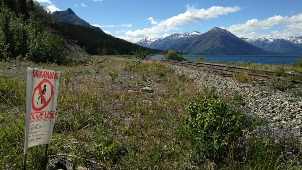The White Pass and Yukon Route Railroad Company has applied to spray weed killer from Carcross, Yukon to the B.C. border and the rest of the route to Skagway. Environment Minister Currie Dixon says they will consider the public's input before it makes a decision.