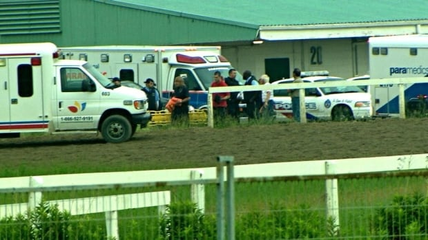 An exercise rider is dead after he was crushed by a horse early Tuesday at Toronto's Woodbine Racetrack. It's believed the rider, Mourad Boudraa, and the horse, Tawney's Wish, crashed into a fence before the animal collapsed on the rider.