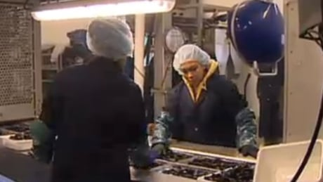 temporary foreign workers in seafood plant