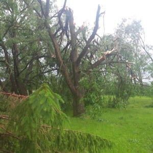 Shot of storm damage in Township of Amaranth