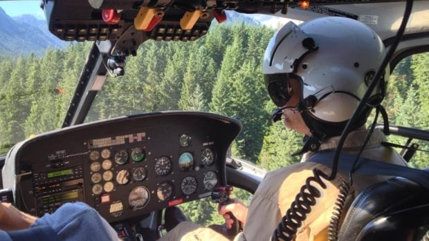 North Shore Rescue took this picture Wednesday from the helicopter it was using to try and find an Australian tourist who went missing in North Vancouver's Lynn Canyon Park.