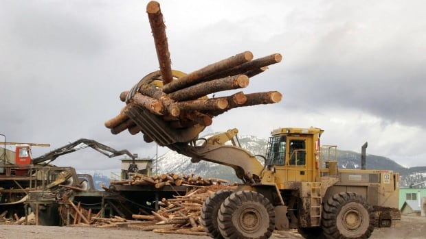 Canadian lawmakers are complaining about a series of laws that display creeping U.S. protectionism, similar to the ones governing softwood lumber that angered Canadian trade officials a decade ago.