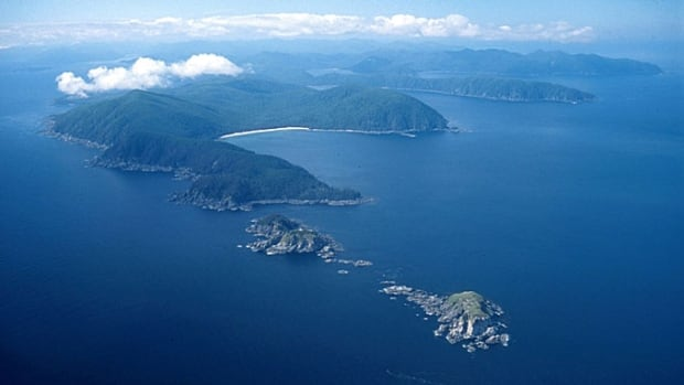 Parks Canada researchers found remains of piers and wharves once connected to fishing villages during an archeological expedition to Gwaii Haanas.