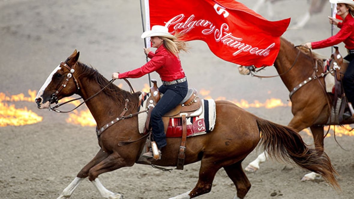 Ron Maclean Calgary Stampede Reflects Alberta S Values