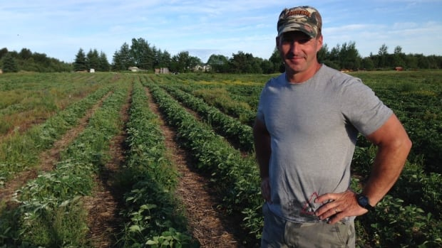 Robin Charbonneau and his family own and operate Ruby Berry Farm, a fixture in Chelmsford for 25 years.