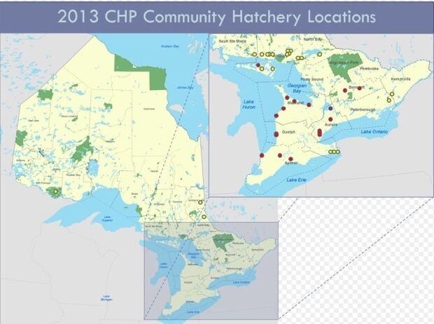 community hatcheries in Ontario, 2013