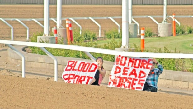 Two women chained themselves to the gates at the chuckwagon race track Friday night at the Calgary Stampede in protest of the event.