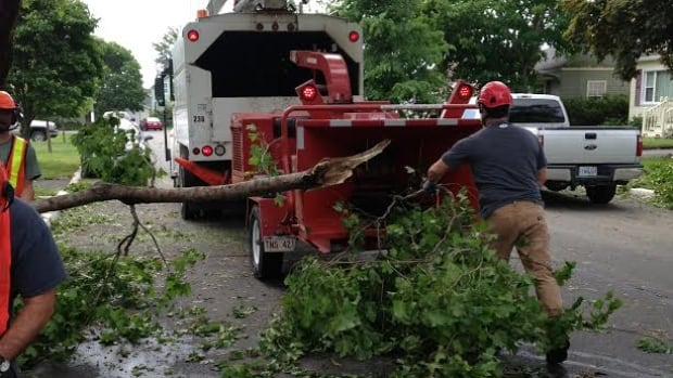 A Saint John crew was cleaning up on Sunday after post-tropical storm Arthur knocked. Saint John is planning to help city residents who had trees and branches fall on their properties.
