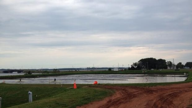 The sewage lagoon on the waterfront in Stratford, P.E.I., is once again raising complaints over a stinky smell.