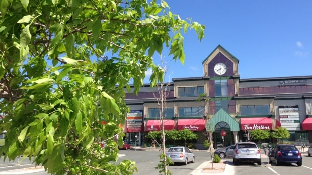 The Churchill Square neighbourhood in St. John's was built around a hub of small businesses.